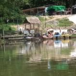 ตลาดน้ำคลองแห อำเภอหาดใหญ่  จังหวัดสงขลา ยามฝนตกหนักปลาตายโดยไม่ทราบสาเหตุ