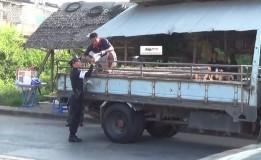 ตำรวจจราจร สภ.หาดใหญ่ตรวจจับรถบรรทุกไม้ด้วยความประมาท