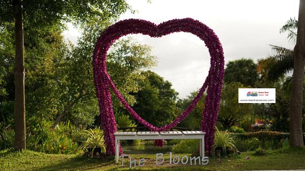 the-boom-(3)