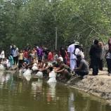 กฟผ. จัดกิจกรรมปล่อยพันธุ์สัตว์น้ำวัยอ่อนคืนสู่ธรรมชาติ (ปลาน้ำกร่อย) ครั้งที่ 5 ประจำปี 2560