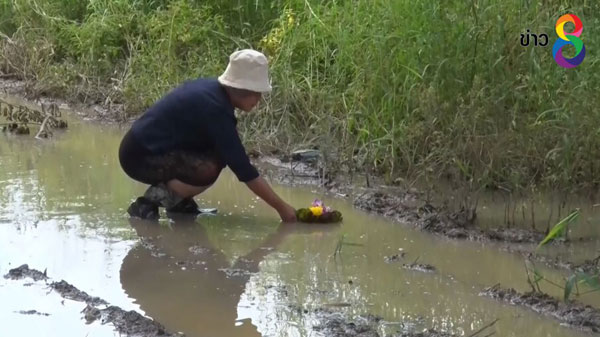 ชาวบ้านแม่ริมลอยกระทงบนถนน หลังน้ำท่วมขัง-มีกลิ่นเหม็นนานถึง 6 ปี