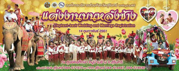 จังหวัดสุรินทร์จัดงานแต่งงานและจดทะเบียนสมรสบนหลังช้าง (ครั้งที่ 11) ฉลองเทศกาลวันแห่งความรัก ประจำปี 2561