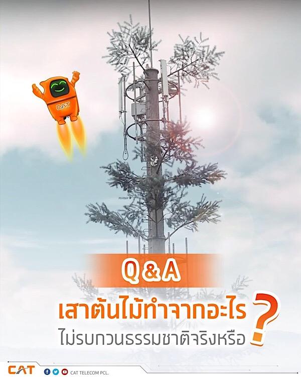 CAT Tree Tower หรือเสาต้นไม้ทำมาจากอะไร?
