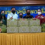 กรมทรัพย์สินทางปัญญา สนับสนุนกล่องบรรจุภัณฑ์ส้มโอหอมควนลัง (Packaging)